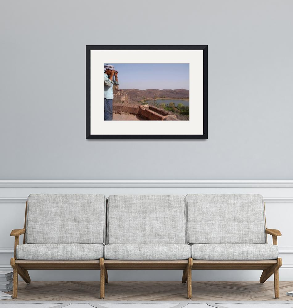 """""""looking out from Ranthambore Fort""""  by Serena"""