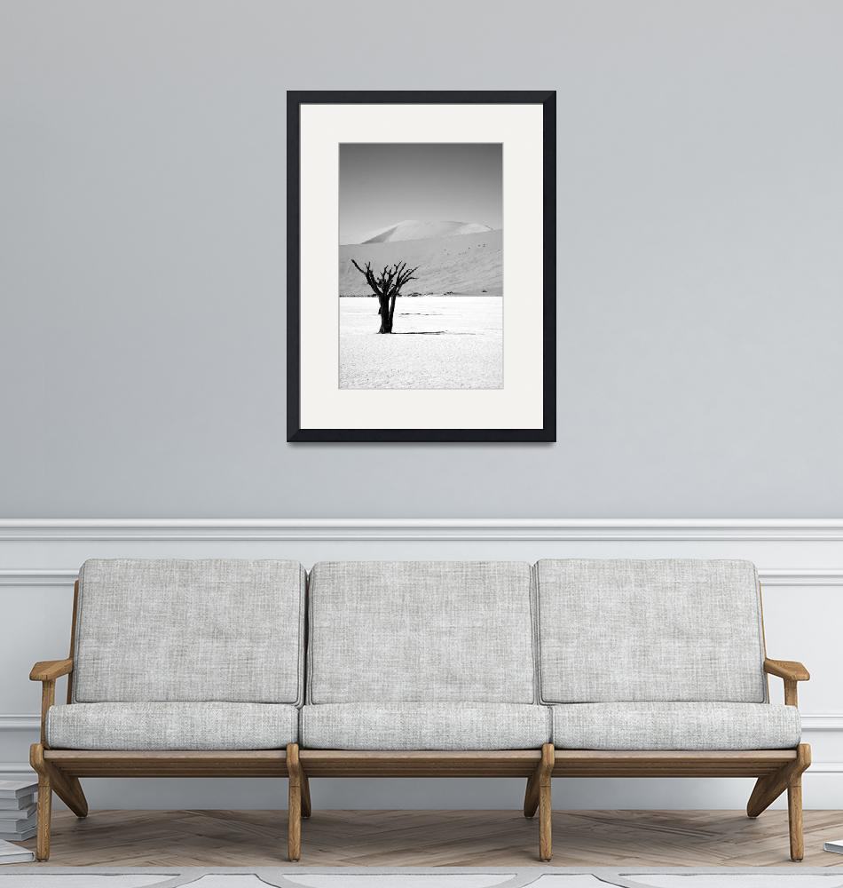 """""""Lonely Desert Tree""""  by mlenny"""