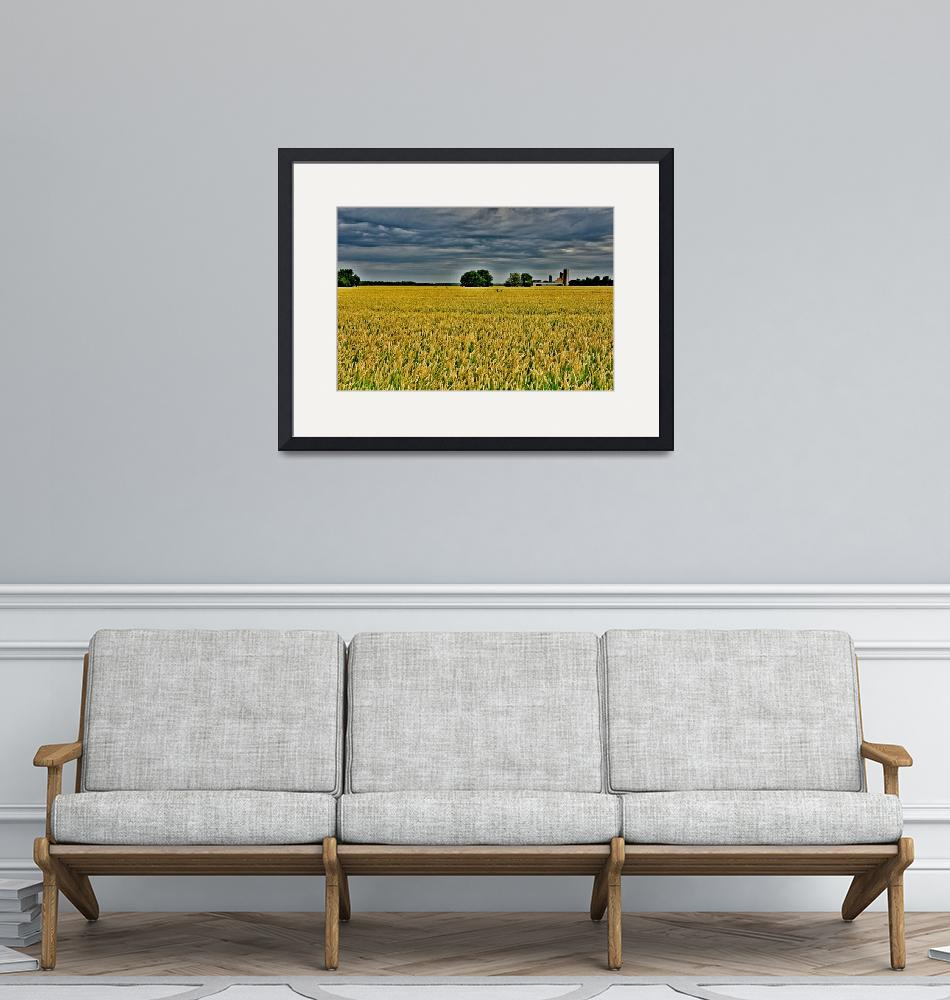 """""""Agriculture in Ontario""""  (2012) by jjphotos"""