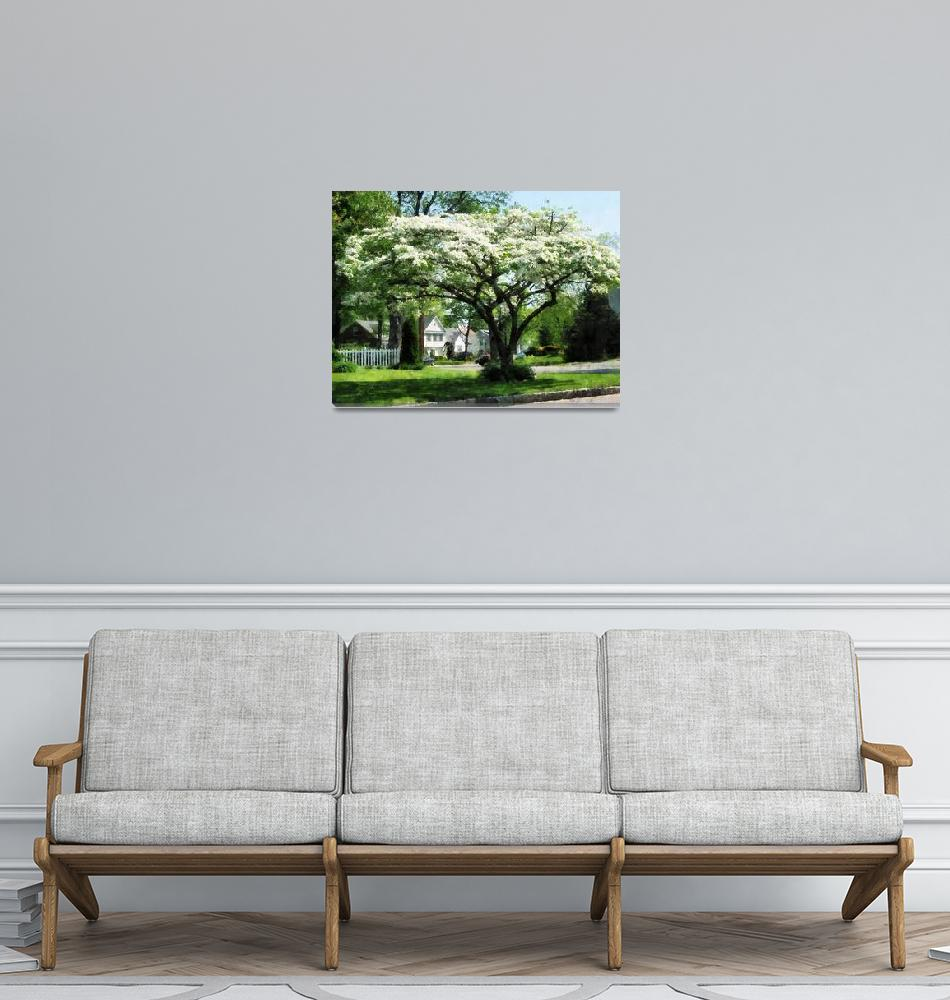"""""""Street With Dogwood""""  by susansartgallery"""