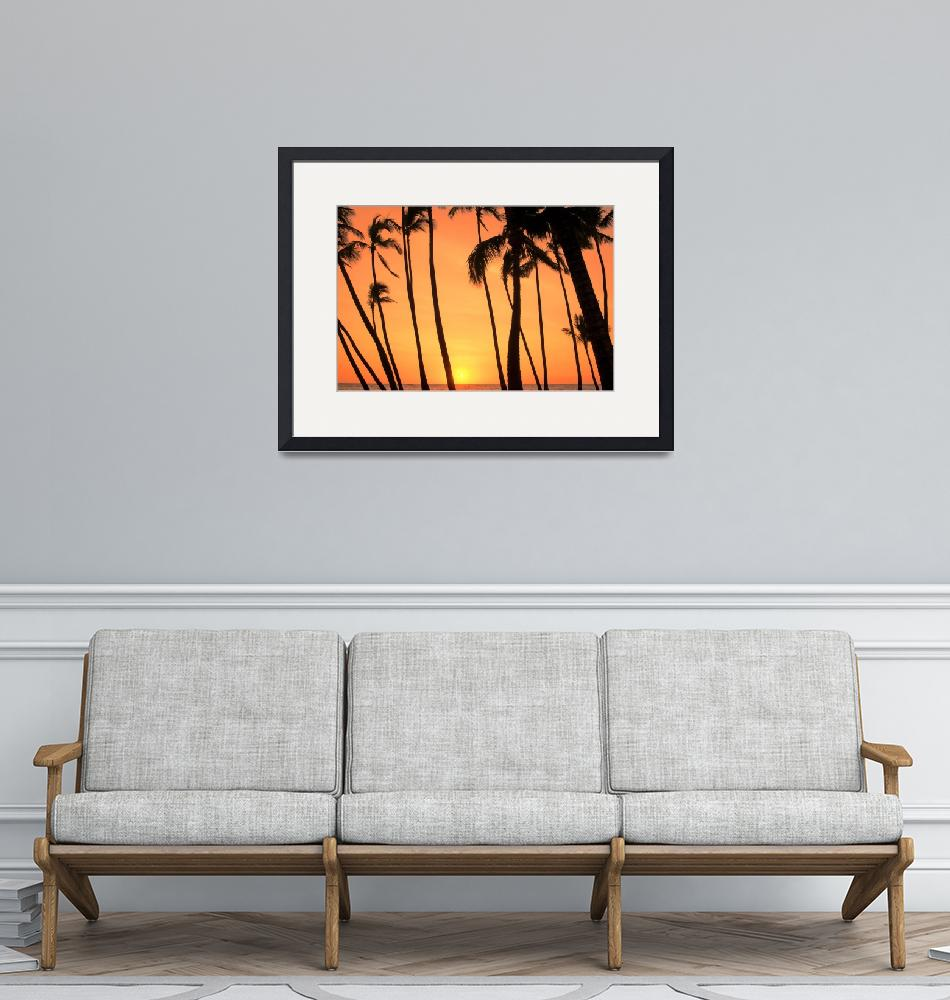 """""""Dancing Palms""""  (2015) by boppintheblues"""
