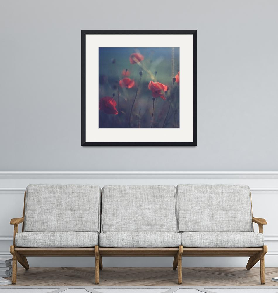 """""""Red wild flowers poppies hot summer""""  (2011) by edwardolive"""