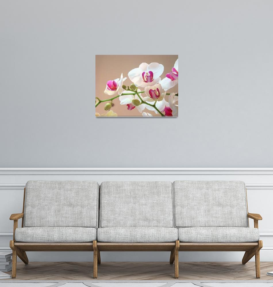 """Orchid Flowers art prints floral Orchids""  (2014) by BasleeTroutman"