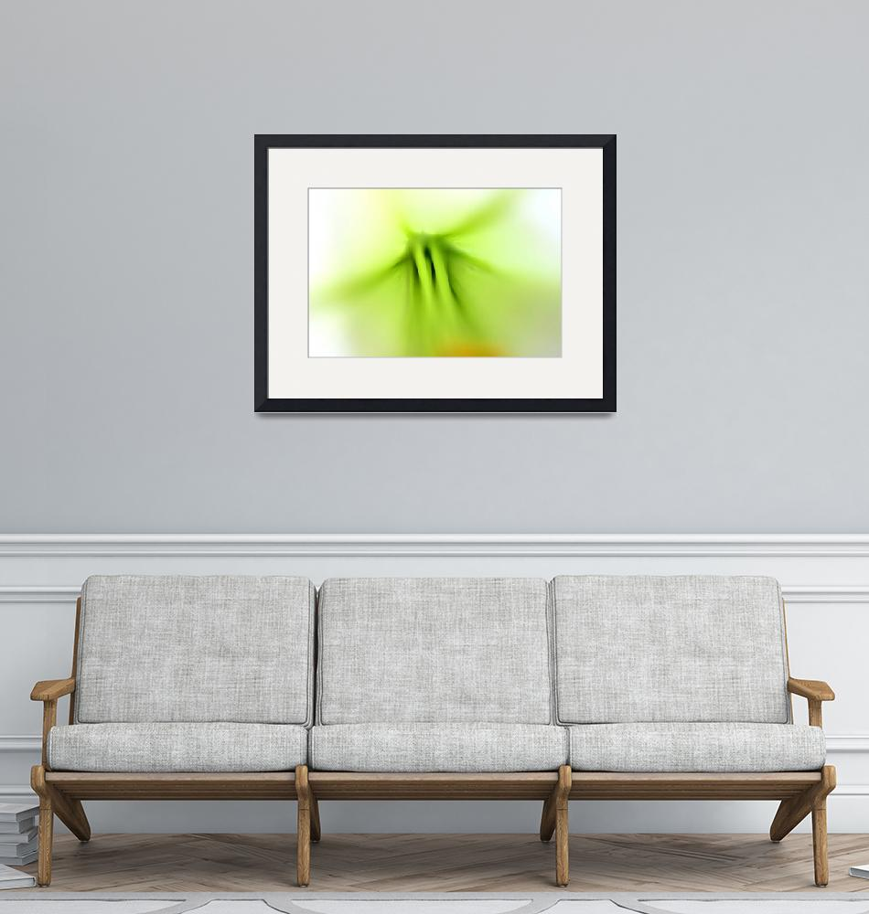 """""""Lily Abstract 2016 number 2""""  (2016) by KsWorldArt"""