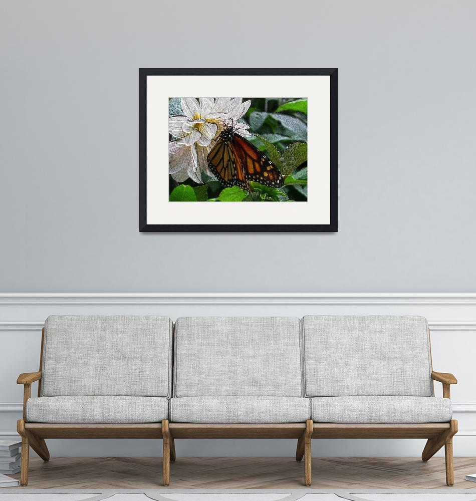 """""""paintedwood-600-butterfly-dsc04173""""  by loxly"""