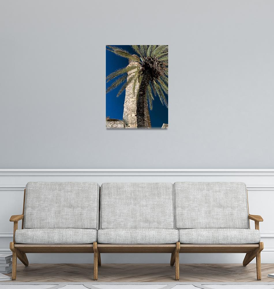 """""""palm and minaret in Jaffa""""  (2014) by rottlig"""