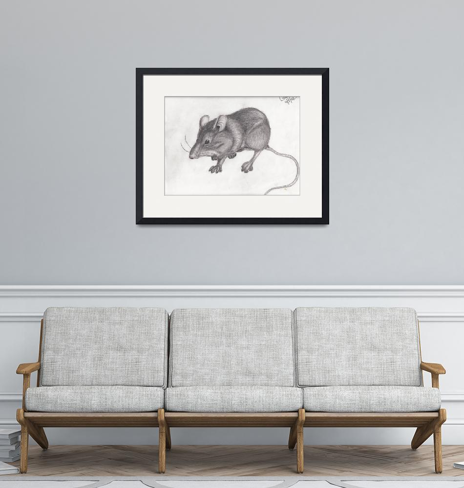 """""""House Mouse""""  (2012) by topparrish"""
