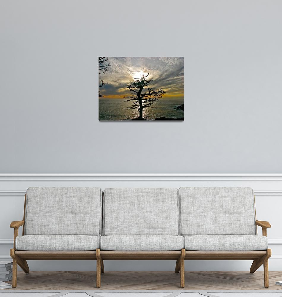 """Tree""  (2009) by drewkimm"