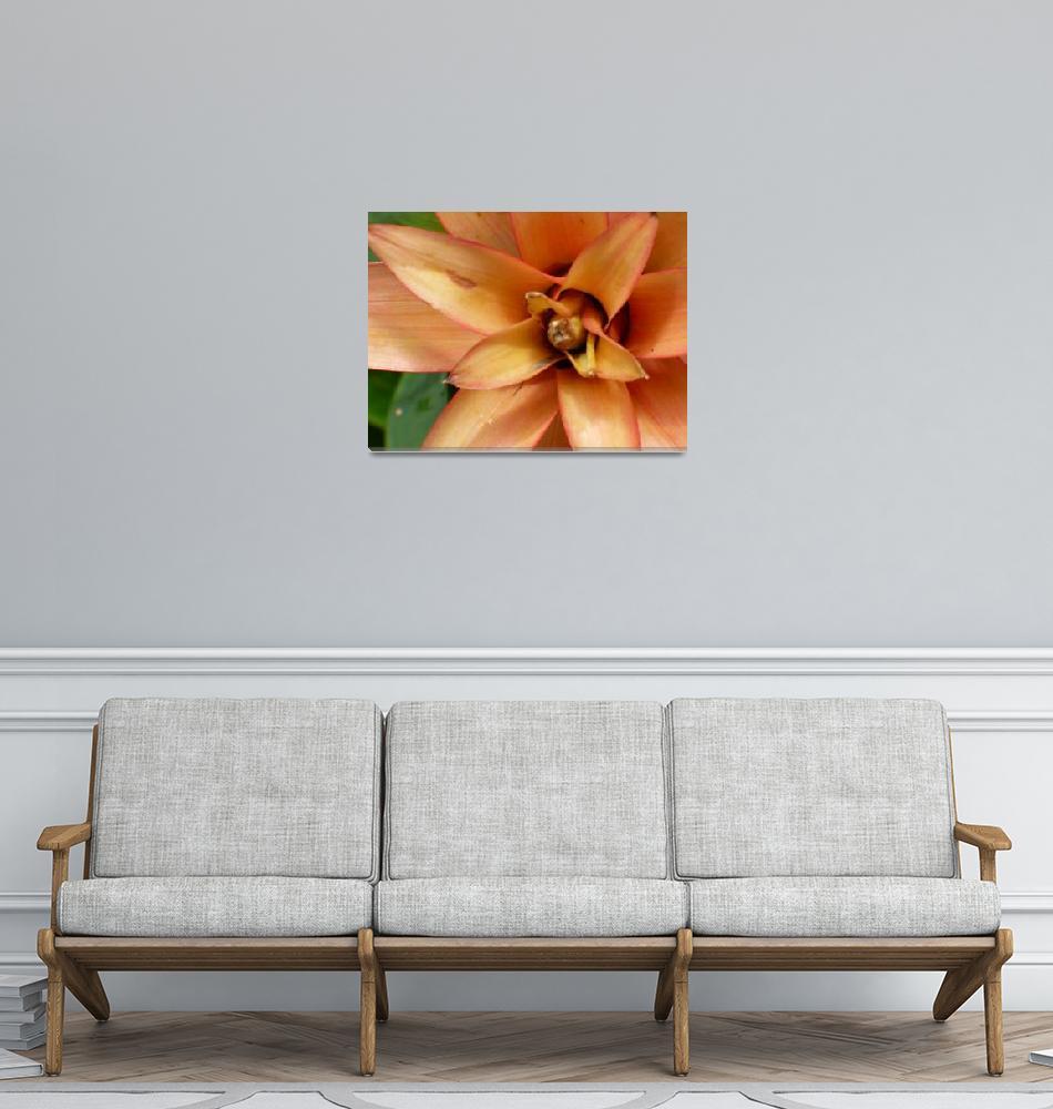"""""""Flower 1""""  (2008) by jms_art"""