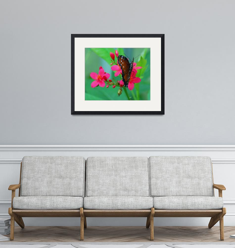 """""""Red Butterfly On Pink Flowers""""  (2012) by DBell"""