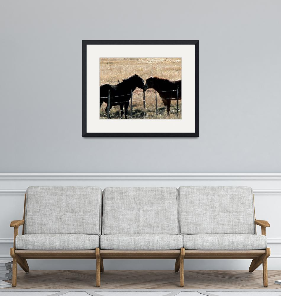 """""""Equine Conversation 1090316""""  (2009) by rayjacque"""