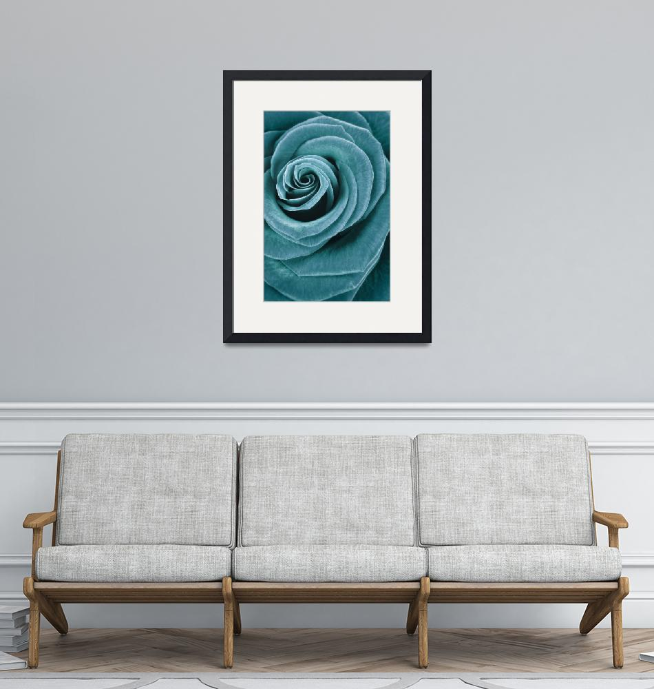 """""""Turquoise rose""""  (2011) by CoraNiele"""