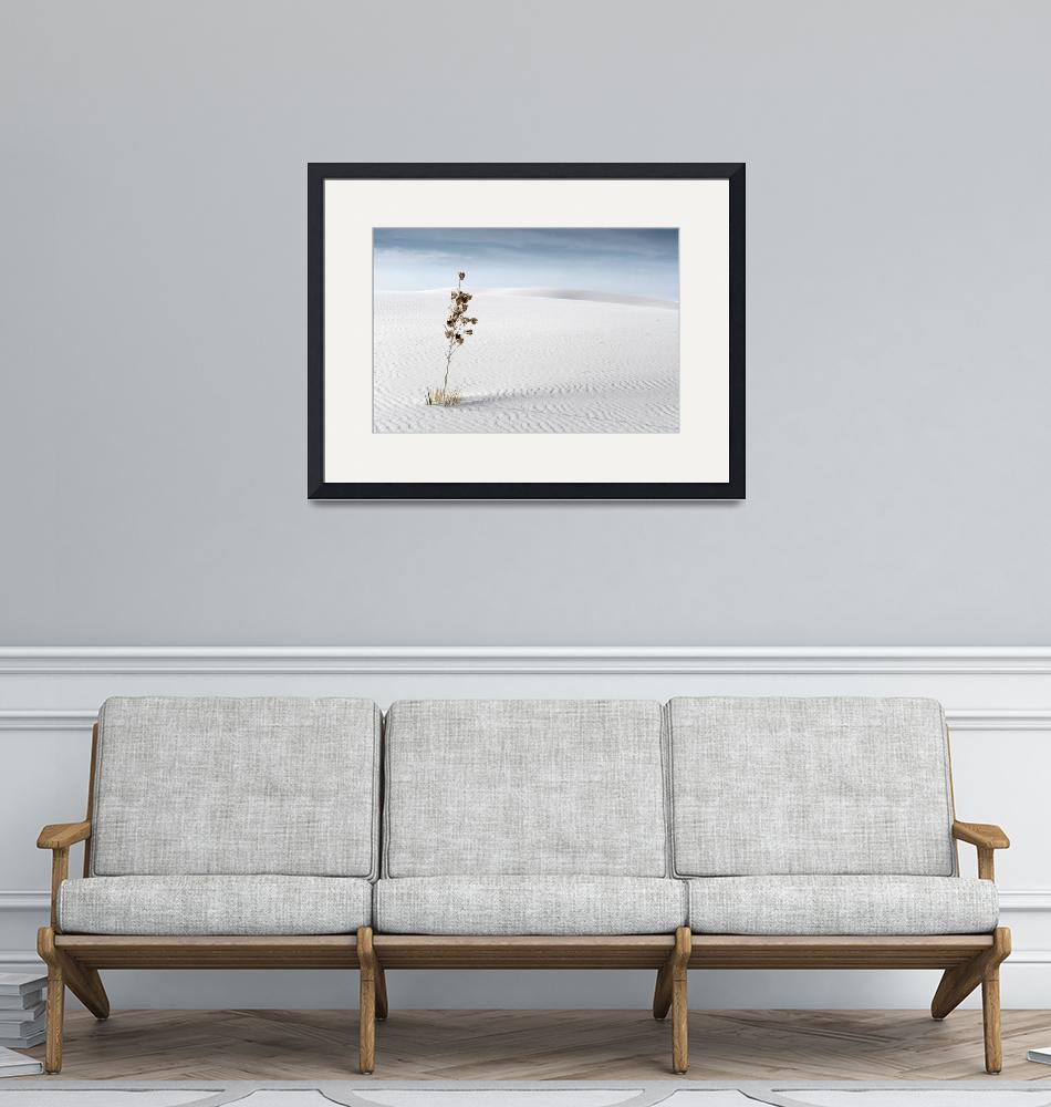 """""""Whits Sands""""  (2010) by miir"""