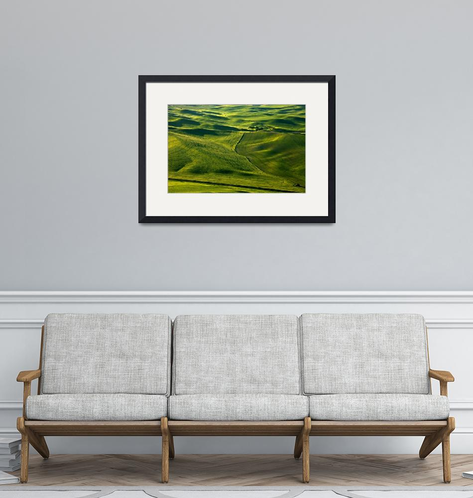 """""""Palouse Patterns""""  (2011) by Dawsonimages"""