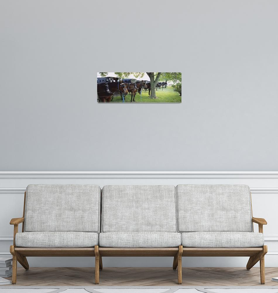 """""""Amish buggies and horses parked at a farm""""  by Panoramic_Images"""