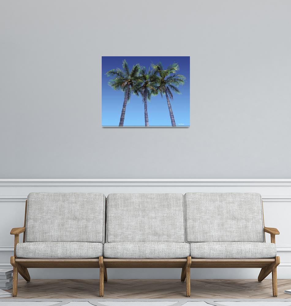 """three palms""  by davidpenfound"