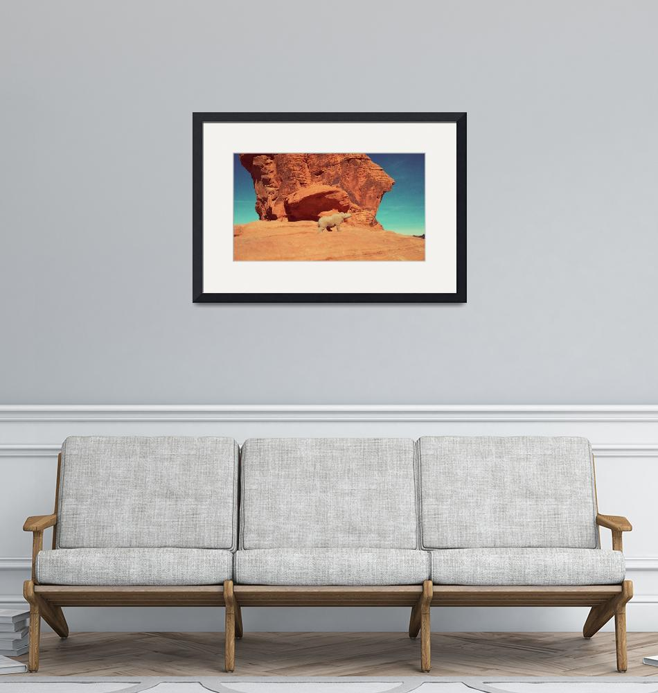 """""""Rhino from plastic background,Valley of Fire"""" by 1521"""
