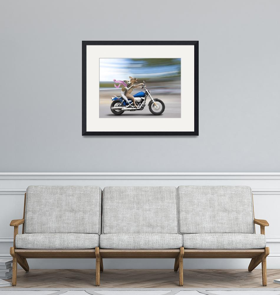 """Biker Dogs Riding a Harley""  (2010) by johnlund"