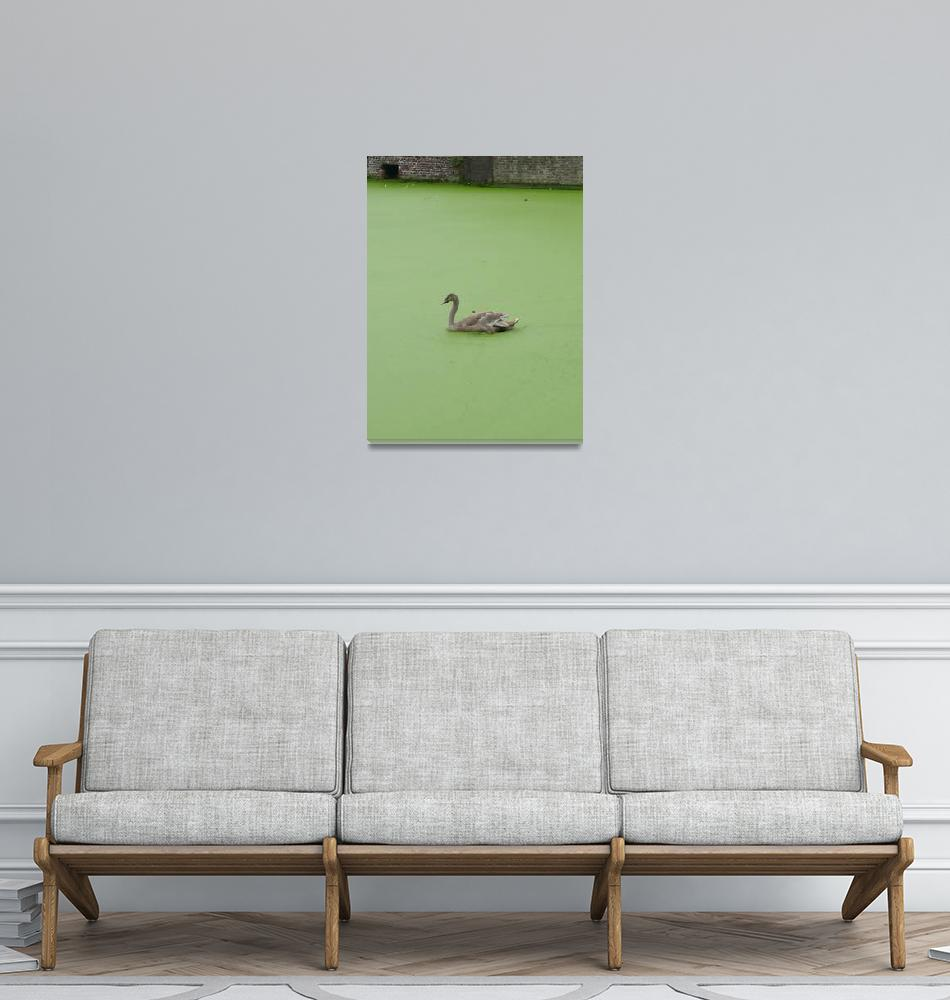"""Duckling""  (2008) by Sawrah"