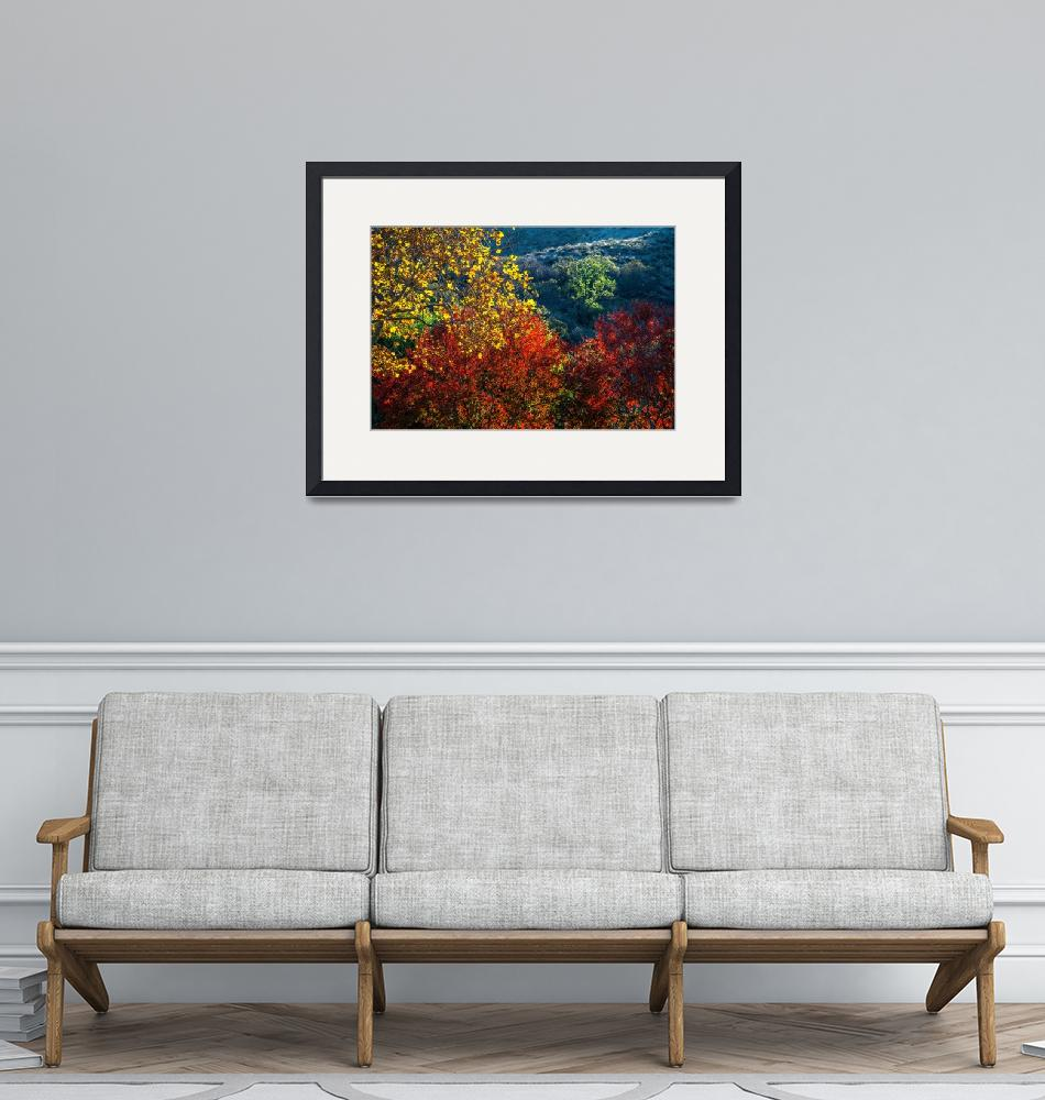 """""""The Colors Of A Beautiful Fall""""  (2018) by LynnBauer"""