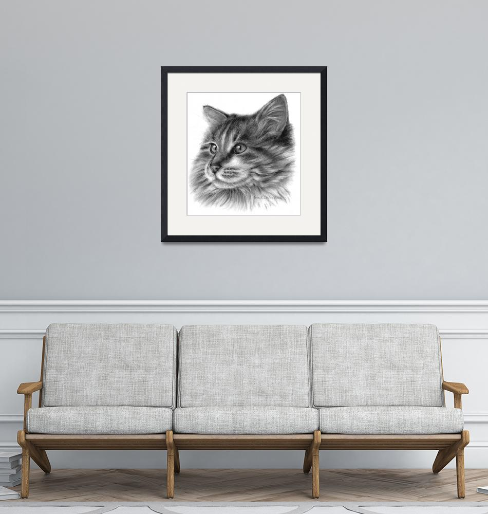 """""""Maine Coon Cat""""  (2006) by sdonley"""