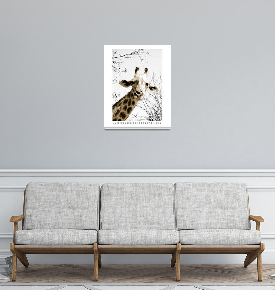 """Giraffe Print""  (2009) by JamesGambsPhotography"
