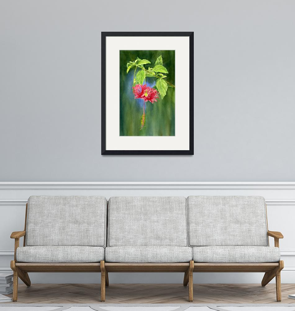 """Hibiscus Chinese Red Lantern""  (2014) by Pacific-NW-Watercolors"