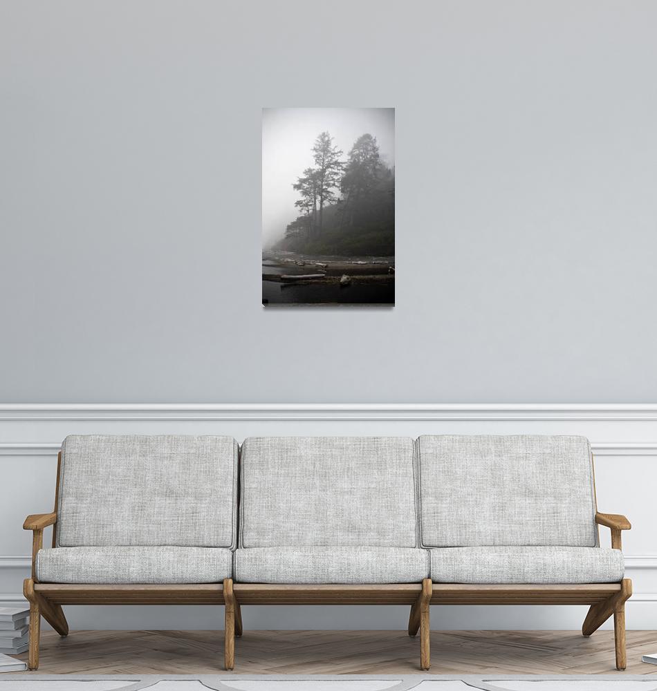"""""""Northwest Fog""""  (2006) by shzimmerman"""