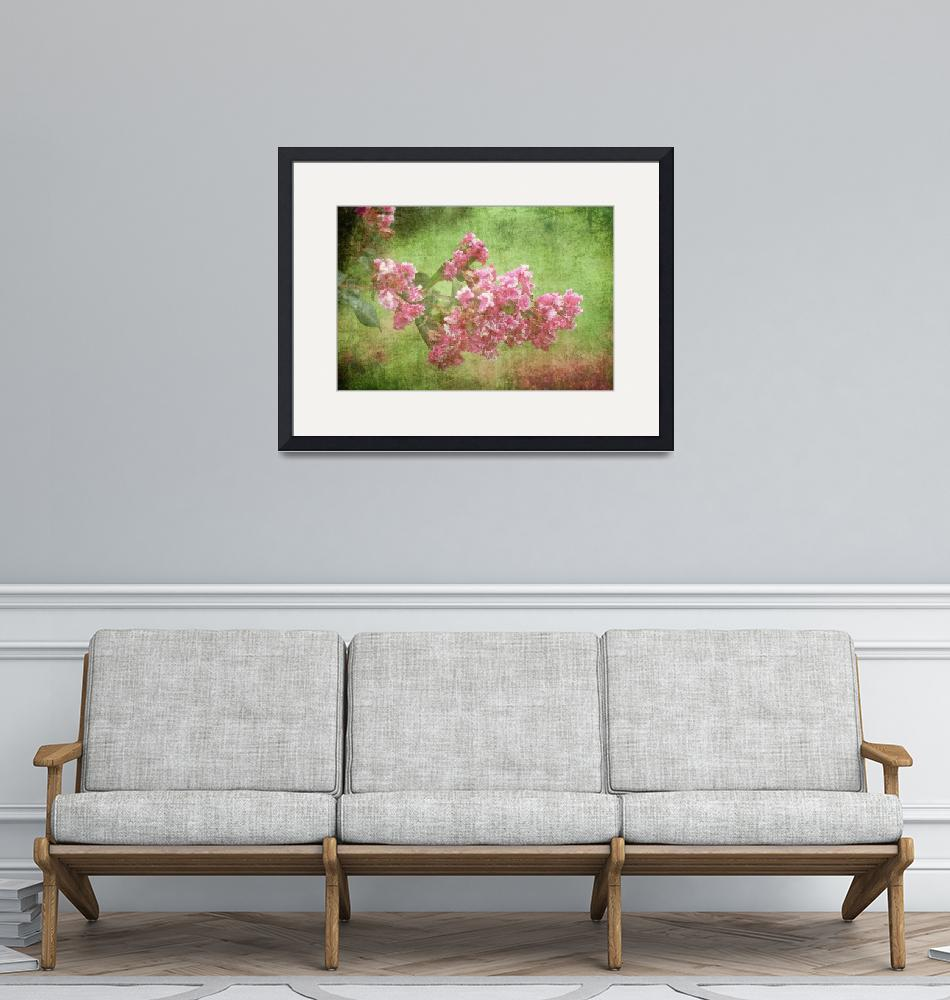 """""""Pink Flower In A French Garden""""  (2013) by ethreal45"""