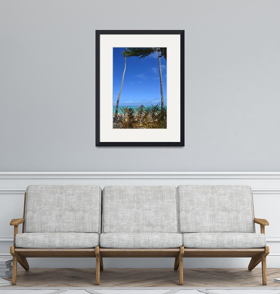"""Punta Cana Palm Wall Framed""  (2014) by JokrG"