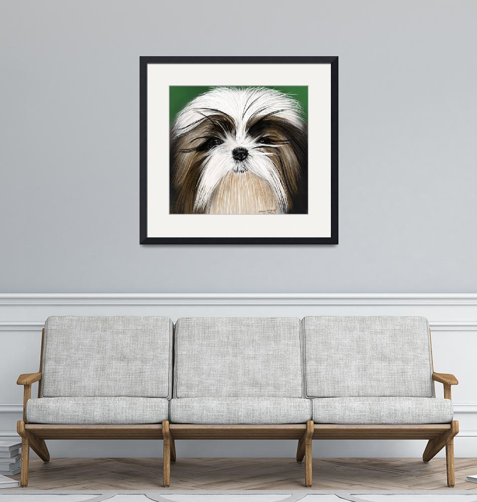 """shih tzu1""  (2015) by mykeirving"