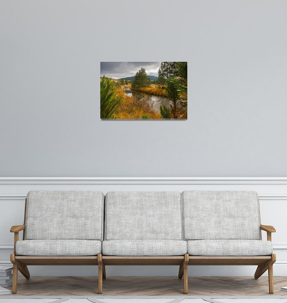 """Creek on Zlatibor Mountain""  (2015) by donttellmymom"