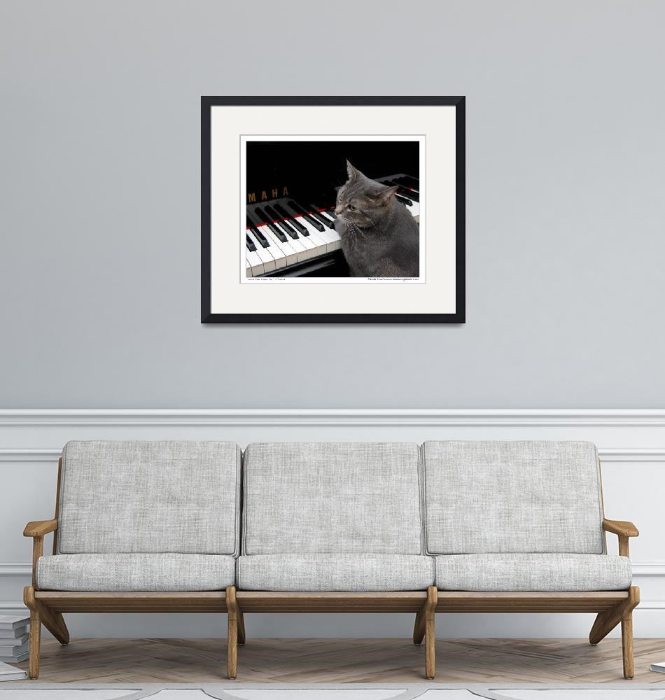 """""""Nora The Piano Cat™ - n0013""""  (2008) by ravenswingstudio"""