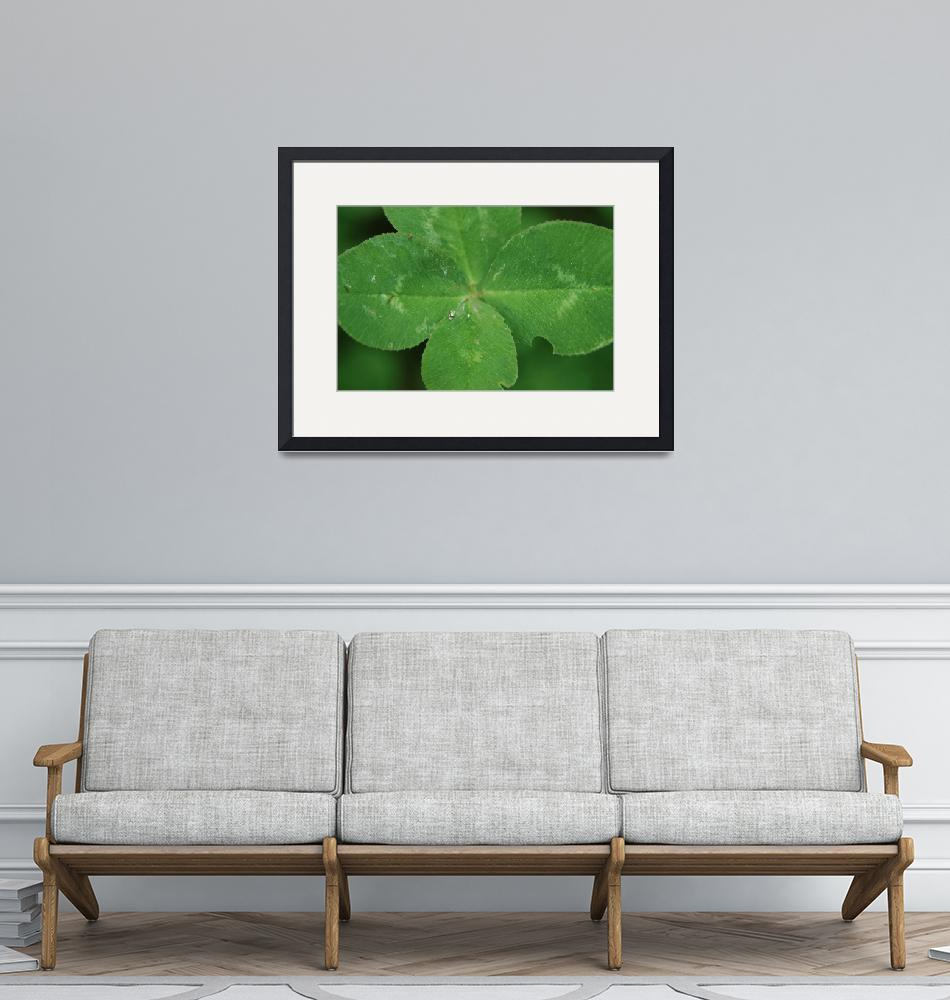 """""""looking over a 4 leaf clover""""  (2009) by imagineit"""