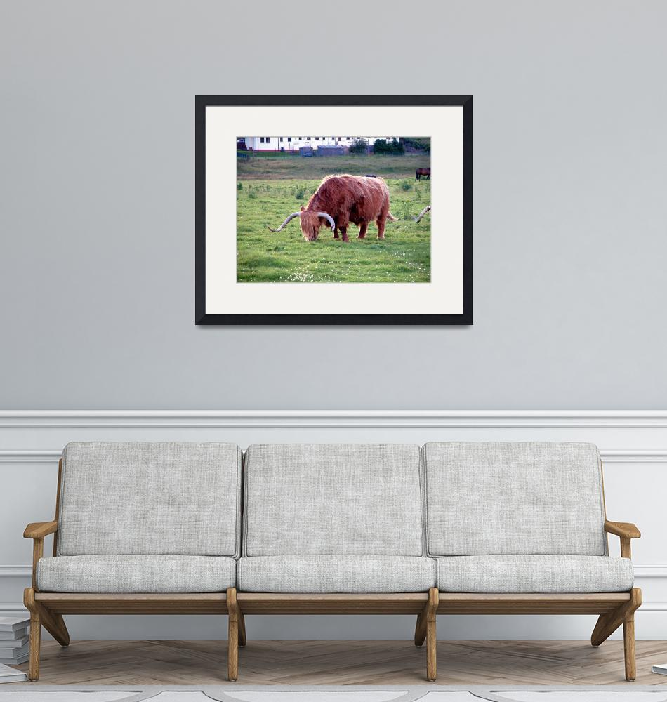 """""""Coo150"""" by KevinDMonaghan"""