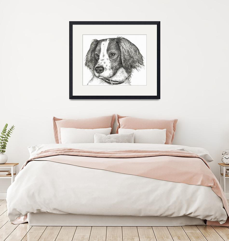 """Emma the Springer Spaniel""  (2009) by BThomasStudios"