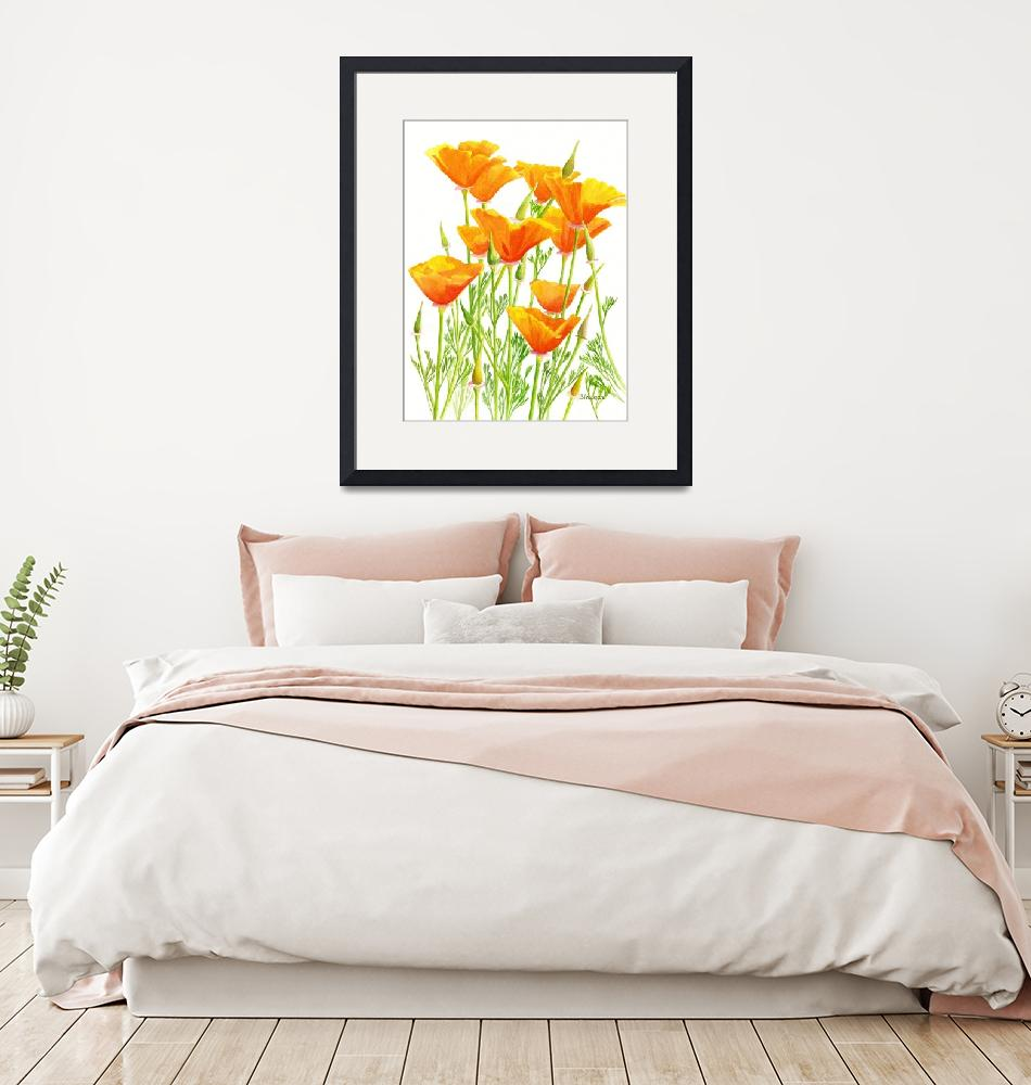 """""""California Poppies with White Background""""  (2011) by Pacific-NW-Watercolors"""