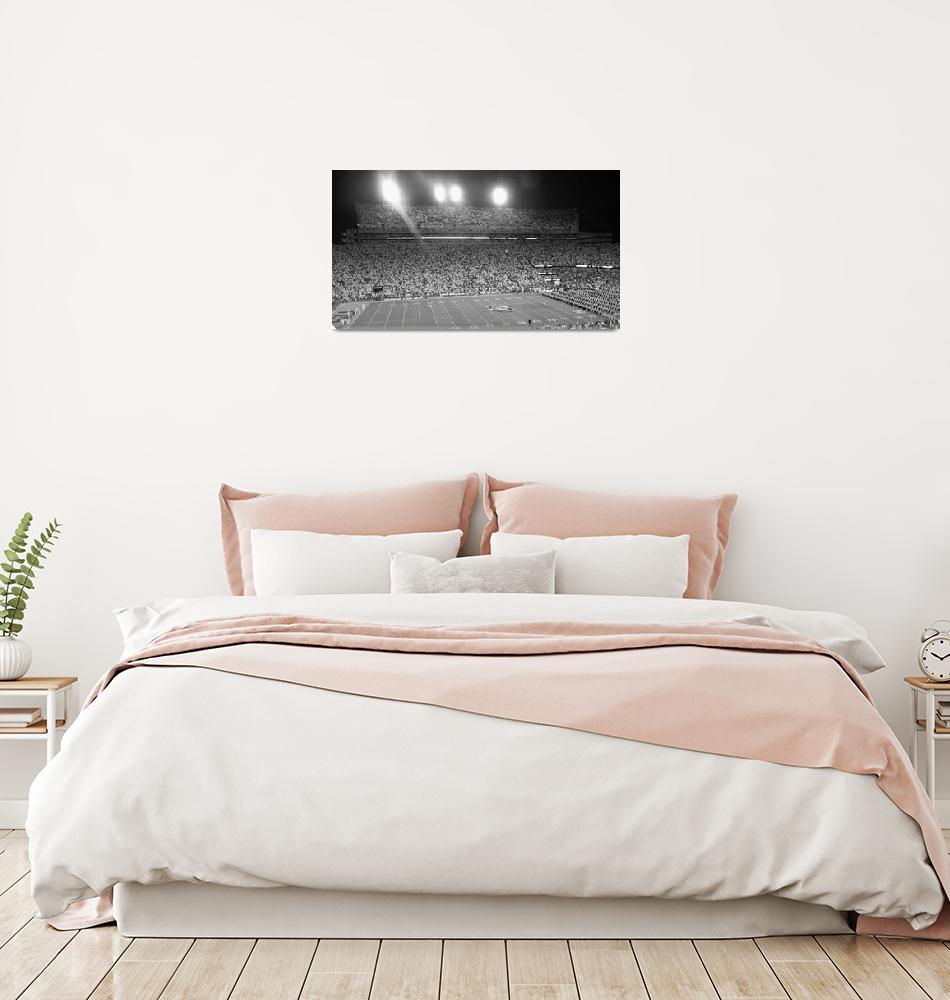 """LSU Football Tiger Stadium""  by lsutigerjrc"