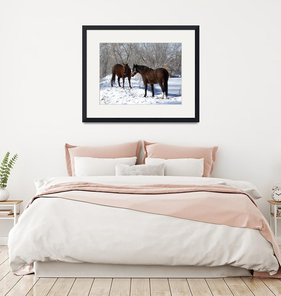 """""""Horses in the Snow""""  (2009) by PettProjects"""