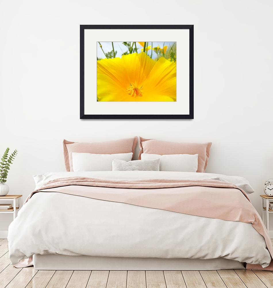 """Big Poppy Flower art prints Poppies Macro Floral""  (2014) by BasleeTroutman"