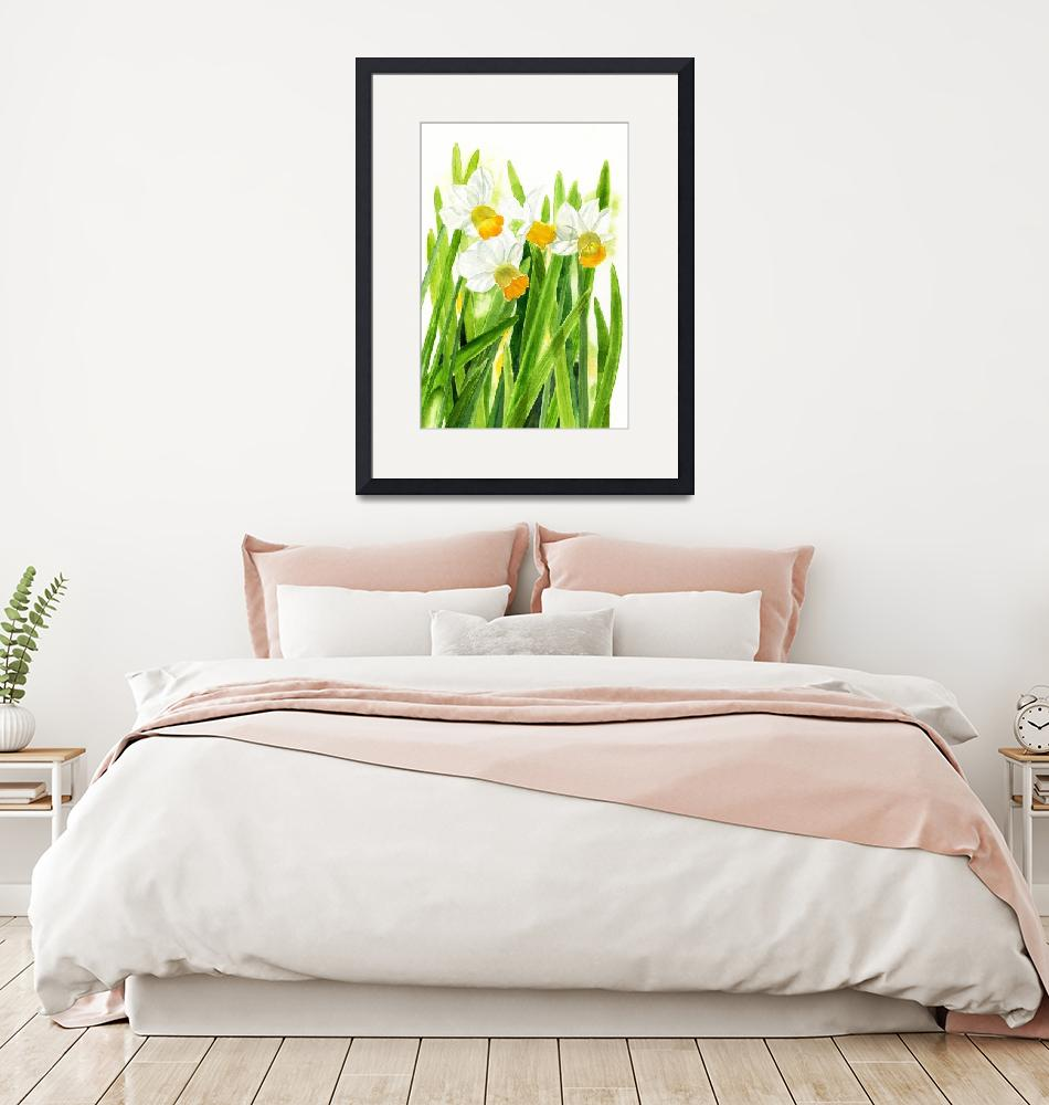 """""""Daffodils with White Background""""  (2013) by Pacific-NW-Watercolors"""