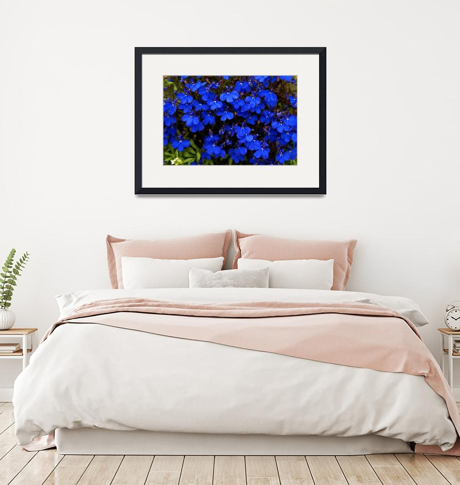 """""""Blue Morning""""  (2008) by ispyimagination"""