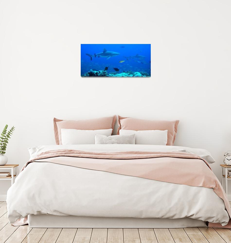 """""""Hunters Reef""""  by Mac"""