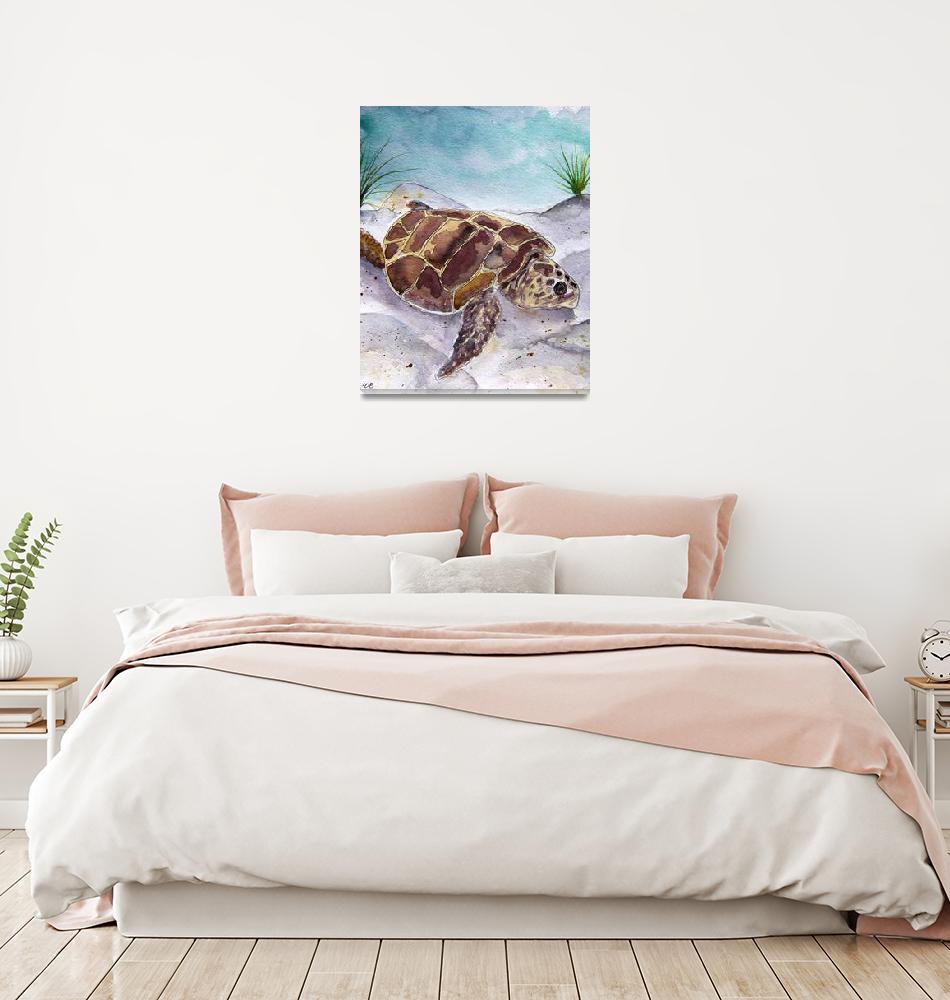 """""""sea turtle portrait""""  (2012) by derekmccrea"""