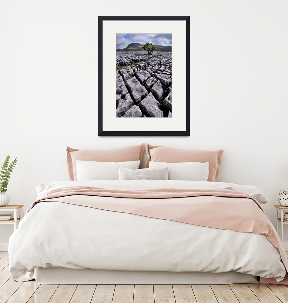 """""""Yorkshire Dales - Ingleborough from White Scars""""  (2010) by Dave_Lawrance_Photography"""