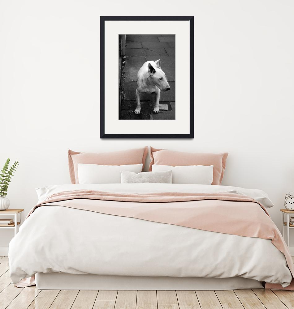 """""""Bull Terrier""""  by AtomicShed"""