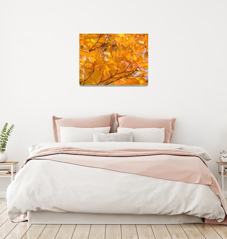 """Golden Orange Autumn Leaves Fall Trees art prints""  (2013) by BasleeTroutman"