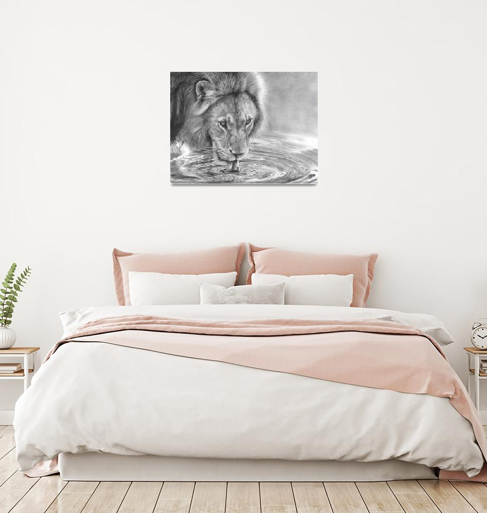 """""""Lapping It Up - African Wildlife - Lion""""  (2018) by MightyFineArt"""