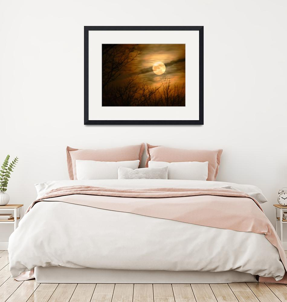 """""""Beauty of the Moon"""" by Callahan_Galleries"""