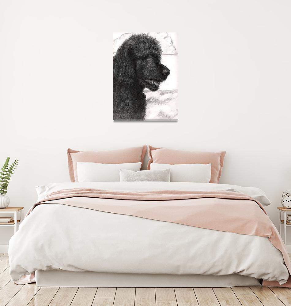 """Black standard poodle""  (2009) by tiab"